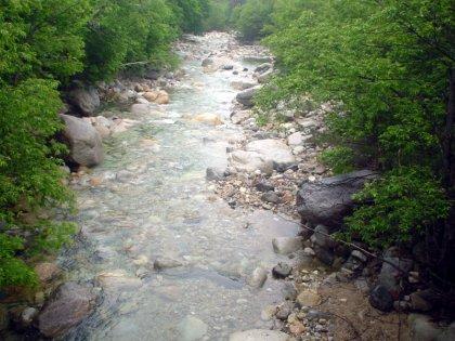 とある川と私の会話