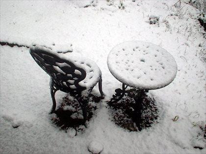 奥多摩の雪