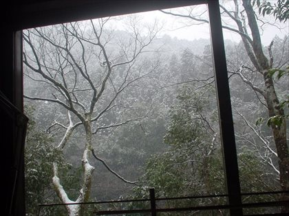 奥多摩は雪、気温マイナス2℃