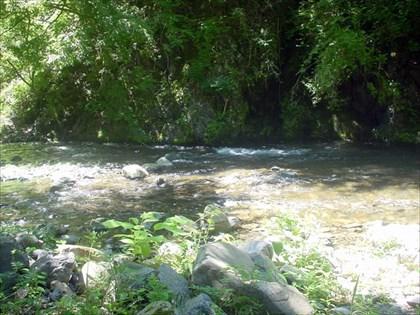 増水気味の小菅川