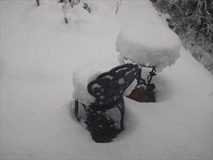 奥多摩は雪・1