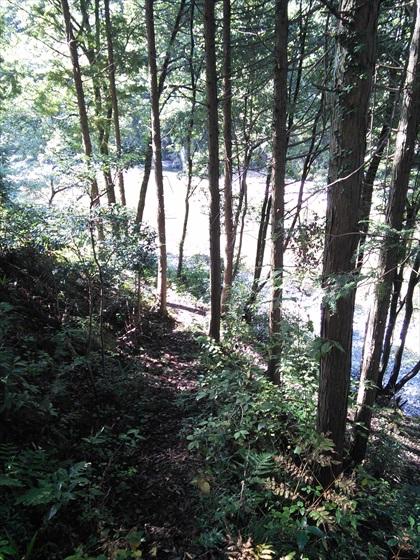 河原を散歩